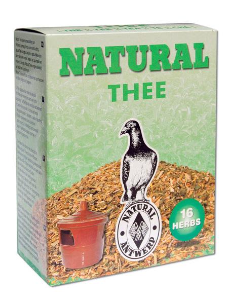 شاي للطيور